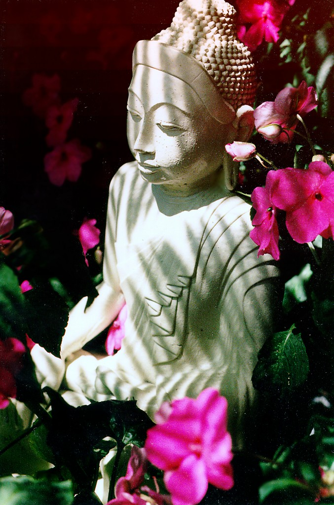 """""""What comes of itself, let it come!"""", goes an Indian saying. (Buddha in courtyard of the Ananda Community in Mountain View, California)"""