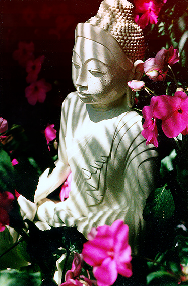 When we merge our consciousness in God through meditation and service, there is no longer any separate self to feel afraid. Buddha statue in the courtyard of the Ananda community in Mountain View, CA.Buddha statue