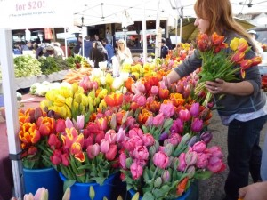 Palo Alto farmer's market